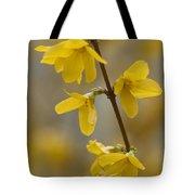 Golden Forsythia Tote Bag by Kathy Clark