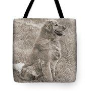 Golden Retriever Dog Sepia Tote Bag by Jennie Marie Schell