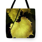 Grapevine In The Back Lighting Tote Bag by Michal Boubin