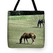 Grazing Horses Tote Bag by John Greim