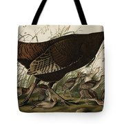 Great American Hen And Young Tote Bag by John James Audubon