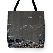 Great Blue Heron Wading 1 Tote Bag by Douglas Barnett
