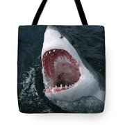 Great White Shark Jaws Tote Bag by Mike Parry