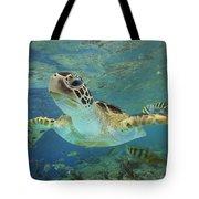 Green Sea Turtle Chelonia Mydas Tote Bag by Tim Fitzharris