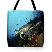 Green Sea Turtle Resting On A Plate Tote Bag by Mathieu Meur