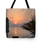 Greeting A New Day Tote Bag by Corinne Rhode