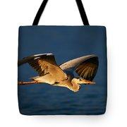 Grey Heron In Flight Tote Bag by Johan Swanepoel