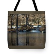 Guadalupe Overflows Tote Bag by Karen Musick