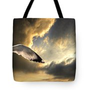 Gull With Approaching Storm Tote Bag by Meirion Matthias