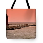 Halladay Tote Bag by Trish Tritz