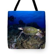 Hawksbill Turtle Swimming With Diver Tote Bag by Steve Jones
