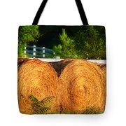 Hay Bales Tote Bag by Todd A Blanchard
