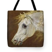 Head Of A Grey Arabian Horse  Tote Bag by Martin Theodore Ward