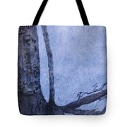 Hedden Park II Tote Bag by Leah  Tomaino