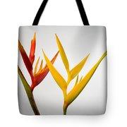 Heliconia Tote Bag by Tomas del Amo - Printscapes