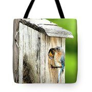 Hello Baby Tote Bag by Betty LaRue