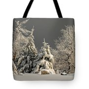Here Comes The Sun Tote Bag by Lois Bryan