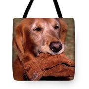 Here To Serve Tote Bag by Skip Willits