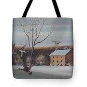 Hezakiah Alexander House  Tote Bag by Charles Roy Smith