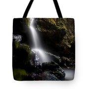 Hidden Falls Tote Bag by Mike  Dawson