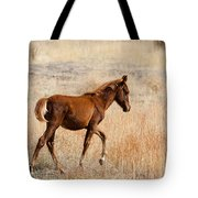 High Stepping Tote Bag by Mike  Dawson