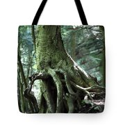 Hold On To Me.  Tote Bag by Amanda Barcon