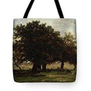 Holm Oaks Tote Bag by Pierre Etienne Theodore Rousseau