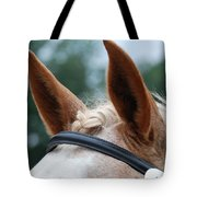 Horse At Attention Tote Bag by Jennifer Ancker