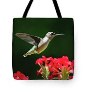 Hovering Hummingbird Tote Bag by Christina Rollo
