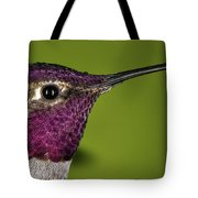 Hummingbird Head Shot With Raindrops Tote Bag by William Lee
