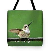 Hummingbird In The Rain Tote Bag by Christina Rollo