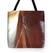 I Got My Eyes On You Tote Bag by Evelina Kremsdorf