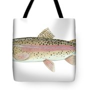 Illustration Of A Rainbow Trout Tote Bag by Carlyn Iverson