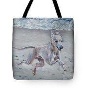 Italian Greyhound On The Beach Tote Bag by Lee Ann Shepard