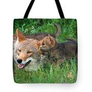 I've Got A Secret Tote Bag by Sandra Bronstein