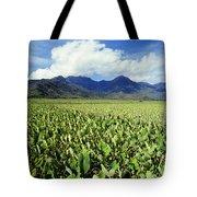 Kauai, Wet Taro Farm Tote Bag by Bob Abraham - Printscapes