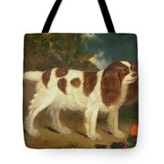 King Charles Spaniel Tote Bag by William Thompson
