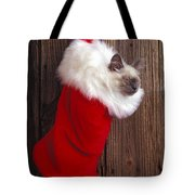 Kitten in stocking Tote Bag by Garry Gay
