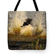 Lab At Work Tote Bag by Robert Frederick