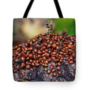 Ladybugs On Branch Tote Bag by Garry Gay