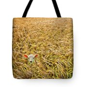 lamb with barley Tote Bag by Meirion Matthias