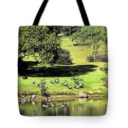 Last Days Of Summer Tote Bag by Gaby Swanson