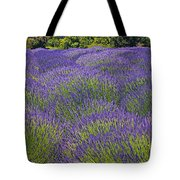 Lavender field Tote Bag by Garry Gay