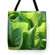 Leaf Lettuce Tote Bag by Lauri Novak