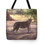 Leopard Tote Bag by Keith Levit