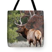 Let The Rut Begin Tote Bag by Sandra Bronstein