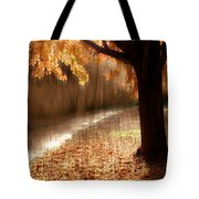 Light Painting Tote Bag by Jessica Jenney