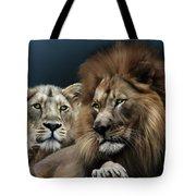 Lion Family Tote Bag by Julie L Hoddinott