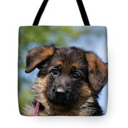 Little Darling Tote Bag by Sandy Keeton