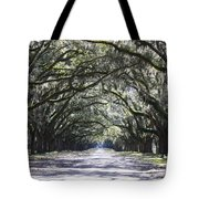 Live Oak Lane In Savannah Tote Bag by Carol Groenen